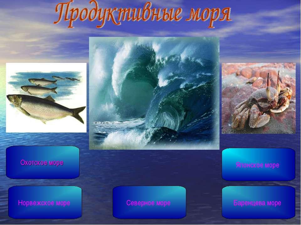 Северное море Охотское море Японское море Норвежское море Баренцева море