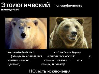 Этологический = специфичность поведения НО, есть исключения вид медведь белый...