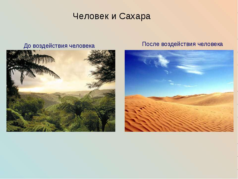 Человек и Сахара До воздействия человека После воздействия человека