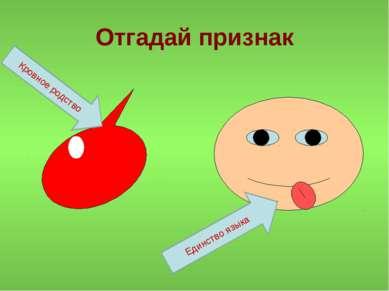 Отгадай признак Кровное родство Единство языка