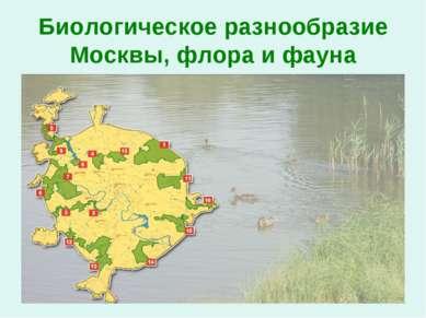Биологическое разнообразие Москвы, флора и фауна