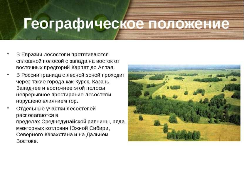 Географическое положение В Евразиилесостепи протягиваются сплошной полосой с...