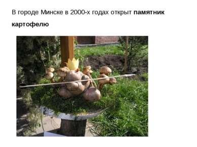 В городе Минске в 2000-х годах открыт памятник картофелю