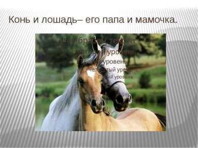 Конь и лошадь– его папа и мамочка.