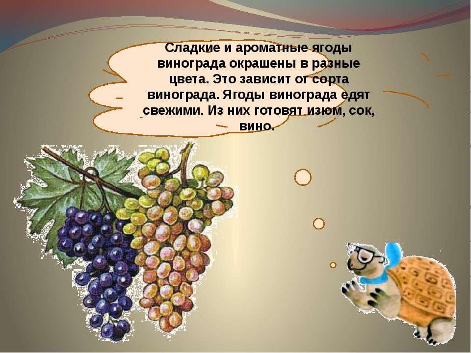 Детские стихи виноград