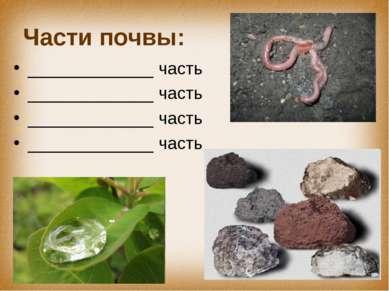 Части почвы: _____________ часть _____________ часть _____________ часть ____...