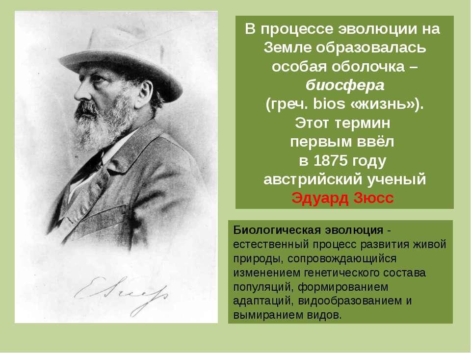 В процессе эволюции на Земле образовалась особая оболочка – биосфера (греч. b...