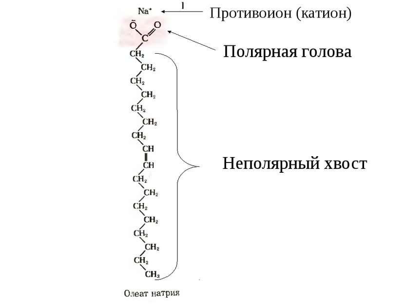 Противоион (катион) Полярная голова Неполярный хвост