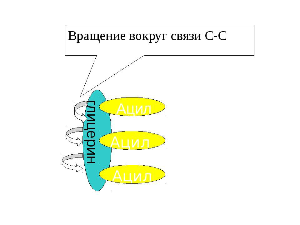 Вращение вокруг связи С-С Ацил Ацил Ацил глицерин