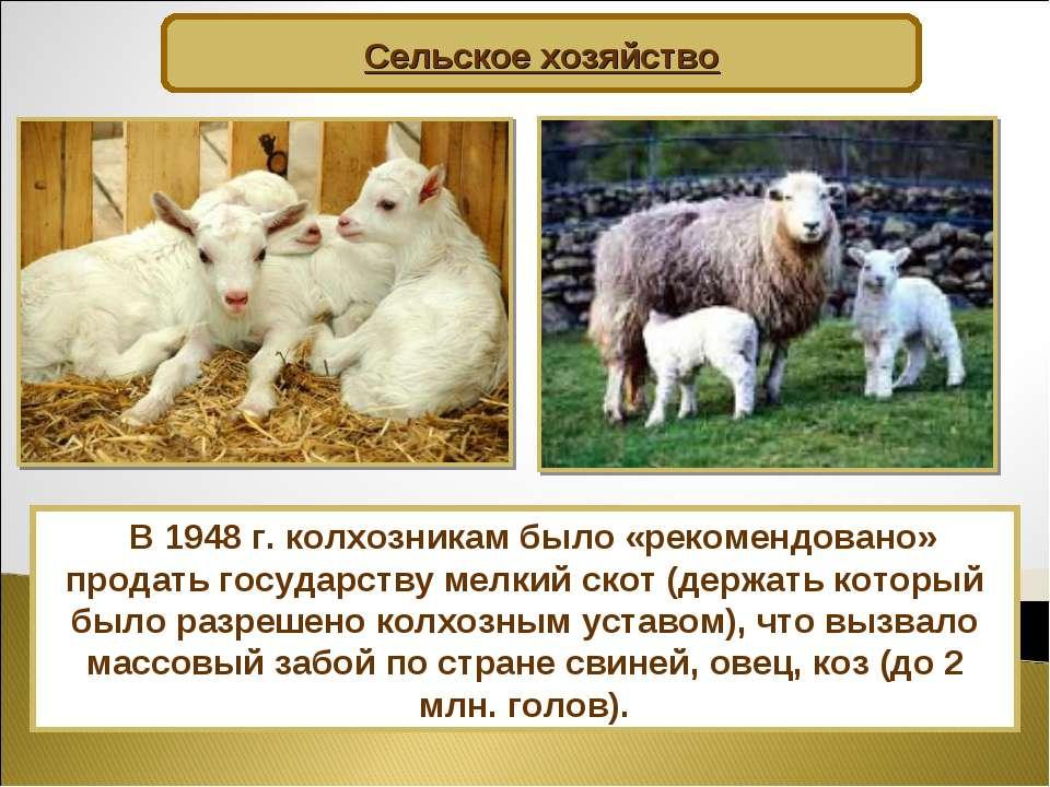 Сельское хозяйство В 1948 г. колхозникам было «рекомендовано» продать государ...