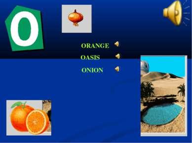 ORANGE OASIS ONION