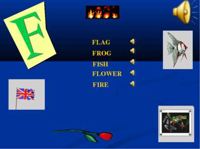FLAG FLOWER FISH FIRE FROG