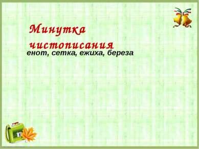 енот, сетка, ежиха, береза Минутка чистописания FokinaLida.75@mail.ru