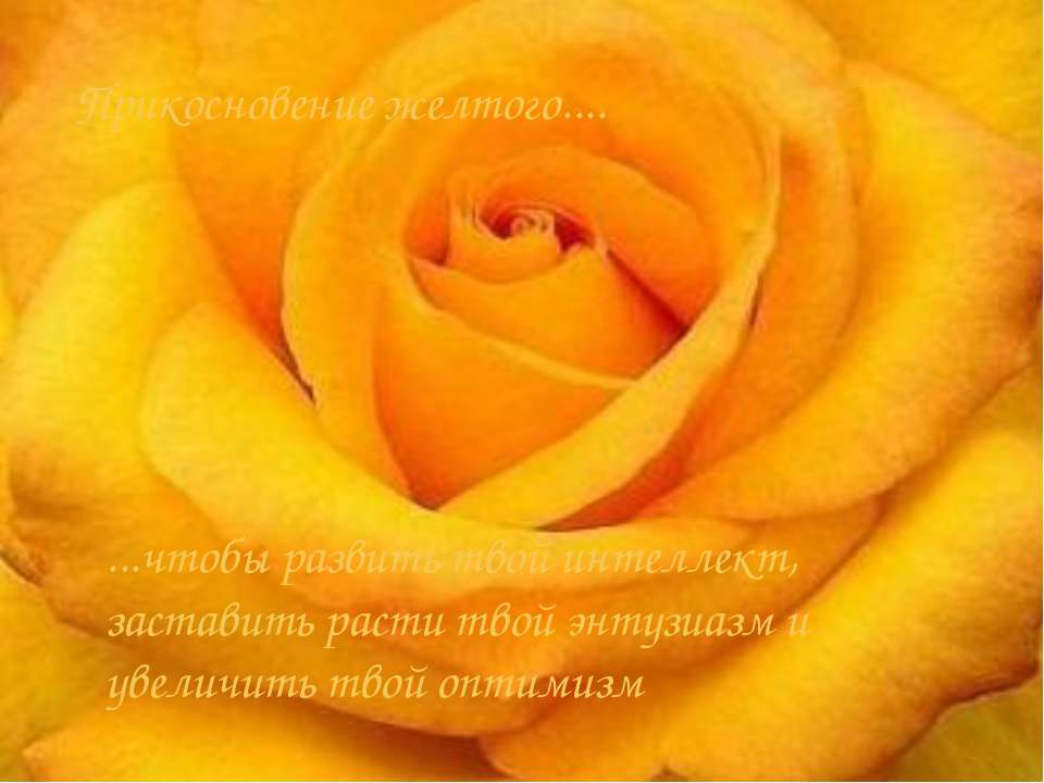 Прикосновение желтого.... ...чтобы развить твой интеллект, заставить расти тв...