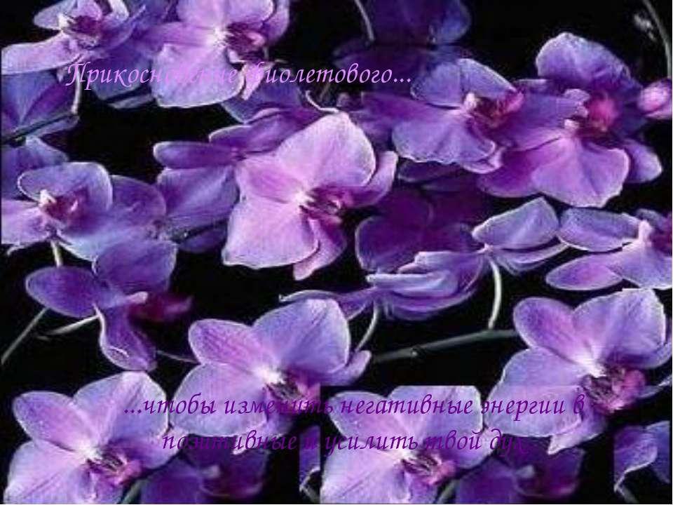 Прикосновение фиолетового... ...чтобы изменить негативные энергии в позитивны...