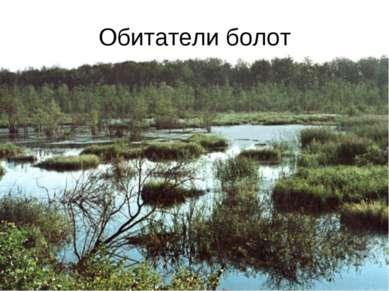 Обитатели болот