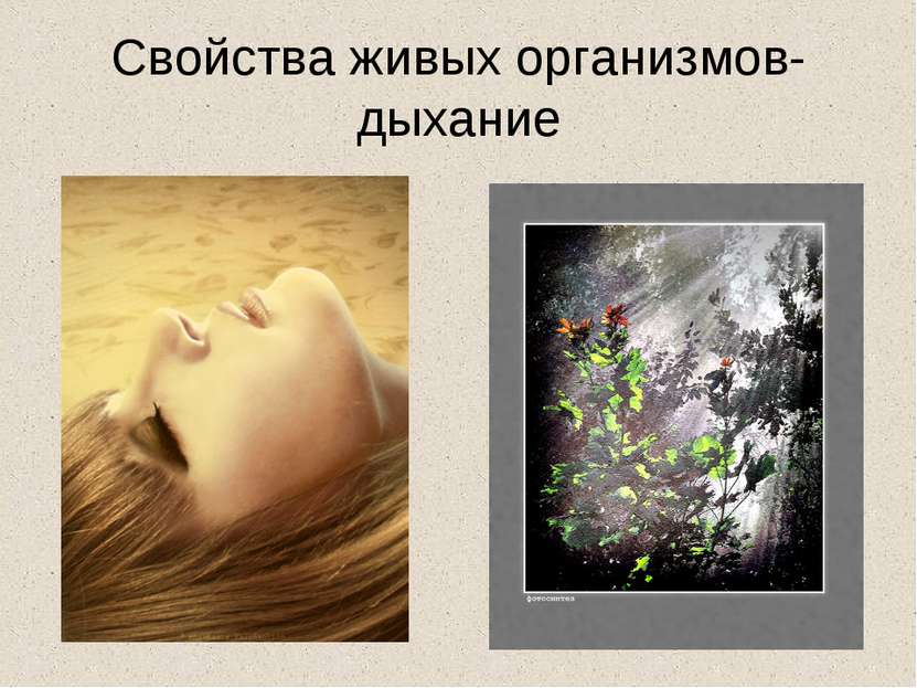 Свойства живых организмов- дыхание