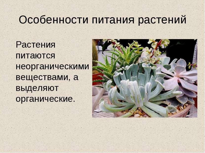 Особенности питания растений Растения питаются неорганическими веществами, а ...
