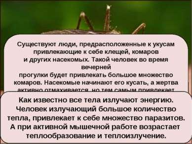 Существуют люди, предрасположенные к укусам привлекающие к себе клещей, комар...