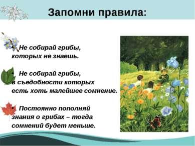 Запомни правила: Не собирай грибы, которых не знаешь. Не собирай грибы, в съе...