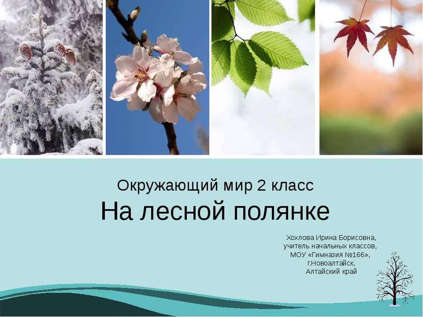 Окружающий мир 2 класс На лесной полянке Хохлова Ирина Борисовна, учитель нач...