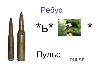 Ребус Пуля *ь* оса * Пульс PULSE