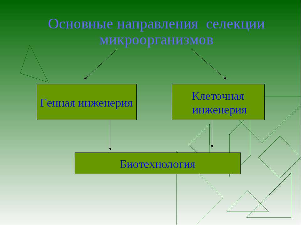 Основные направления селекции микроорганизмов Генная инженерия Клеточная инже...