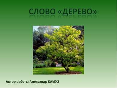 Автор работы Александр КАМУЗ