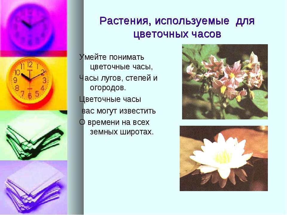 Растения, используемые для цветочных часов Умейте понимать цветочные часы, Ча...
