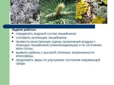 Задачи работы: определить видовой состав лишайников; составить коллекцию лиша...