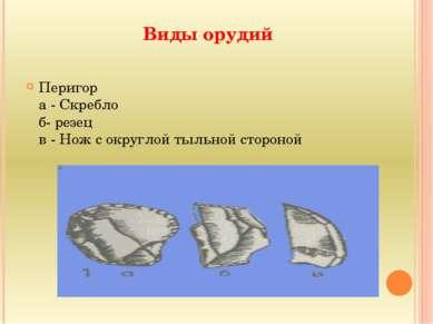 Виды орудий Перигор а - Скребло б- резец в - Нож с округлой тыльной стороной