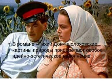 В романе «Тихий Дон» шолоховские картины природы приобретают особое идейно-эс...