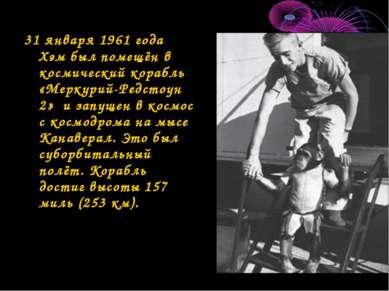 31 января 1961 года Хэм был помещён в космический корабль «Меркурий-Редстоун ...