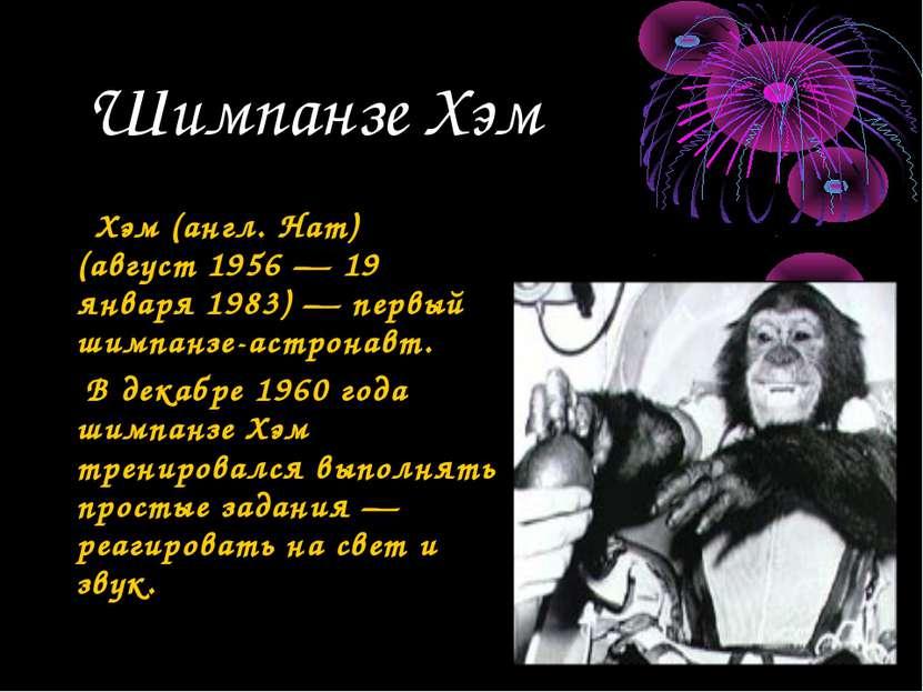 Шимпанзе Хэм Хэм (англ. Ham) (август 1956 — 19 января 1983) — первый шимпанзе...