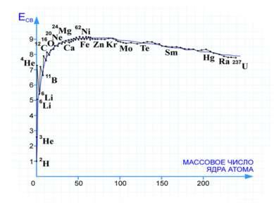 Удельная энергия связи Энергия связи ядра увеличивается вместе с увеличением ...