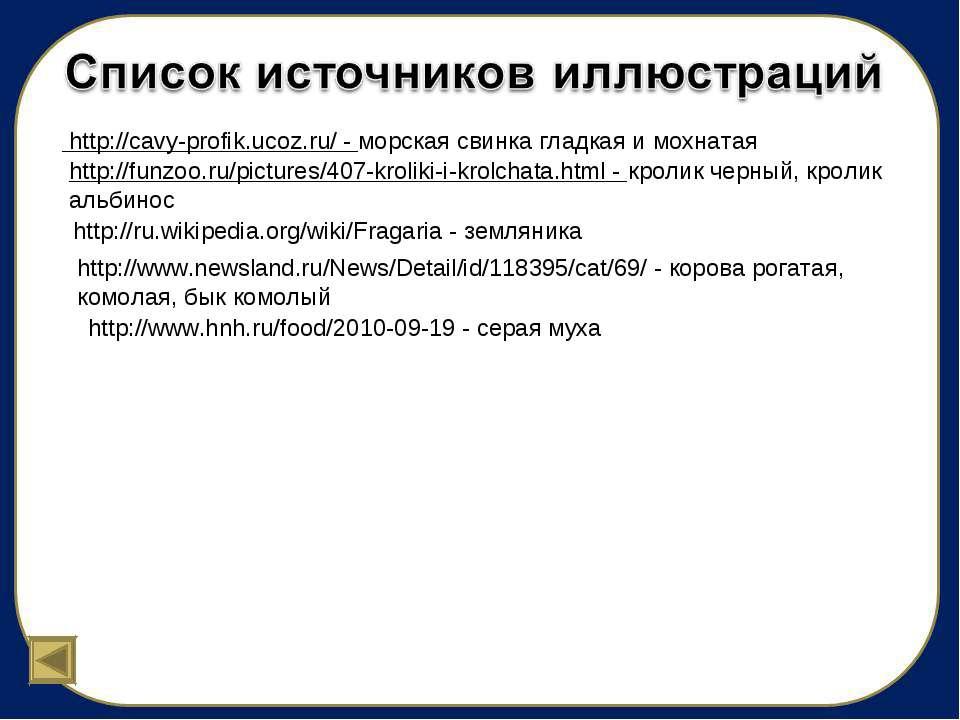 http://cavy-profik.ucoz.ru/ - морская свинка гладкая и мохнатая http://funzoo...