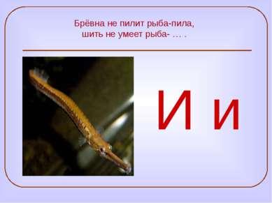 Брёвна не пилит рыба-пила, шить не умеет рыба- … . И и
