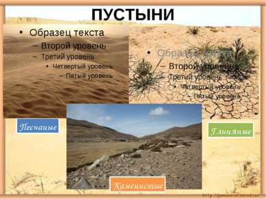 ПУСТЫНИ Песчаные Глиняные Каменистые