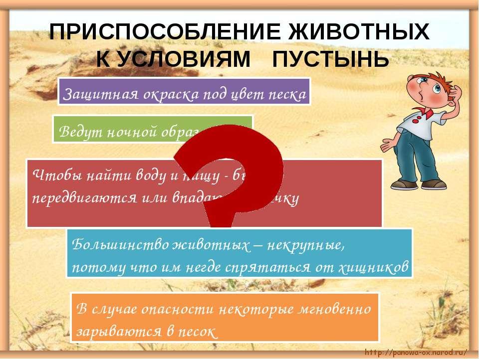 ПРИСПОСОБЛЕНИЕ ЖИВОТНЫХ К УСЛОВИЯМ ПУСТЫНЬ Защитная окраска под цвет песка Ве...