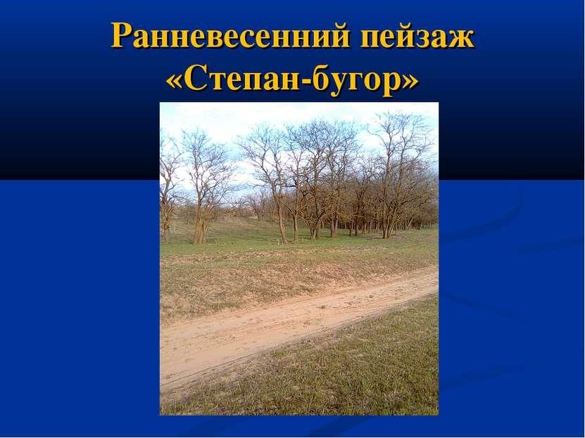 Ранневесенний пейзаж «Степан-бугор»