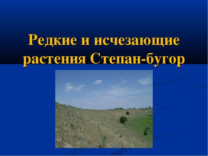 Редкие и исчезающие растения Степан-бугор