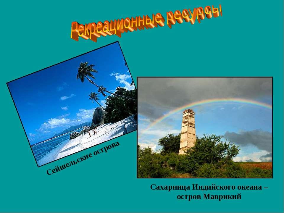 Сейшельские острова Сахарница Индийского океана – остров Маврикий