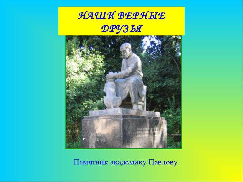 НАШИ ВЕРНЫЕ ДРУЗЬЯ Памятник академику Павлову.