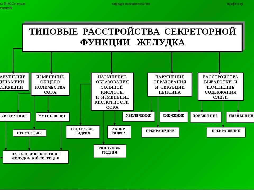6 ММА им. И.М.Сеченова кафедра патофизиологии профессор П.Ф.Литвицкий