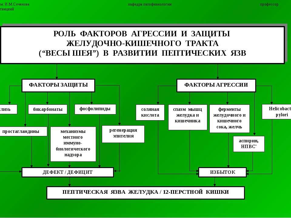 11 ММА им. И.М.Сеченова кафедра патофизиологии профессор П.Ф.Литвицкий