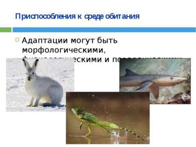 Приспособления к среде обитания Адаптации могут быть морфологическими, физиол...