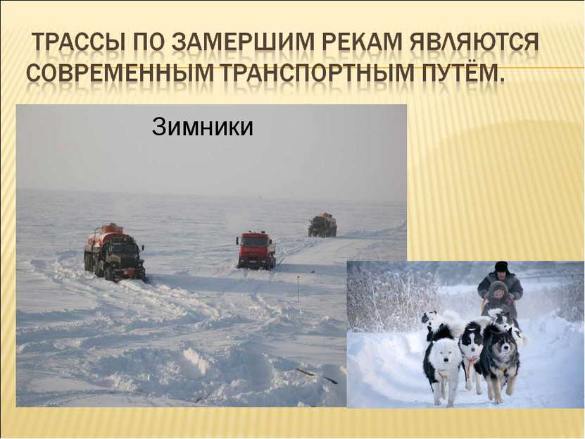 Зимники