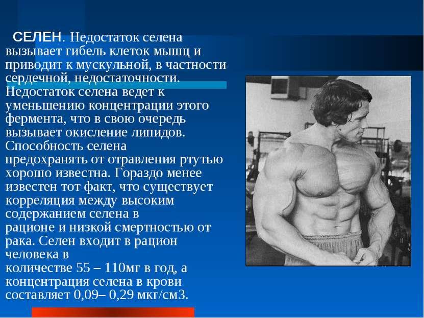 СЕЛЕН. Недостаток селена вызывает гибель клеток мышц и приводит к мускульной,...