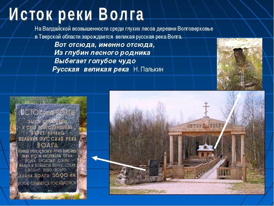 На Валдайской возвышенности среди глухих лесов деревни Волговерховье в Тверск...