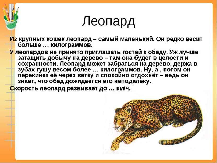 Леопард Из крупных кошек леопард – самый маленький. Он редко весит больше … к...